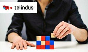 Bespoke extranet service improves procurement at Telindus